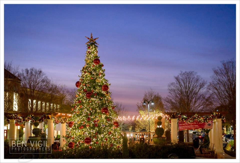 Tree Lighting this Saturday at The Collection at Forsyth