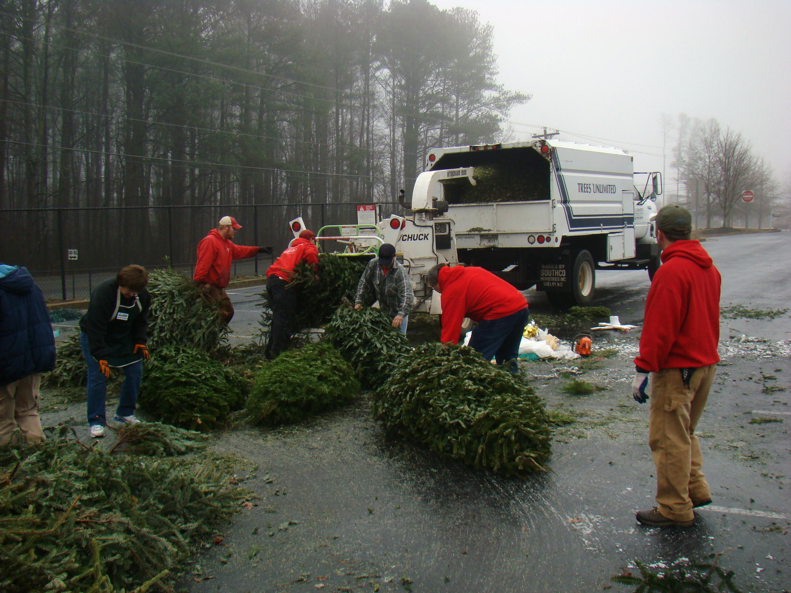 Tree Recycling Locations Remain Open