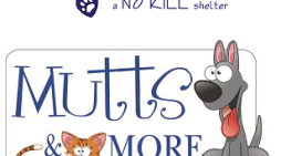 Mutts & More Fall Family Festival