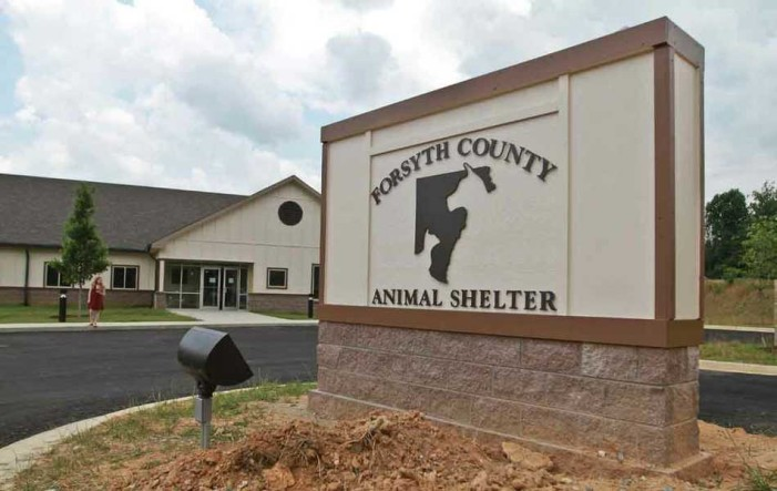 Volunteers Needed – Forsyth County Animal Shelter